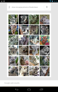 Google Search in Jelly Bean returning pictures of koala bears